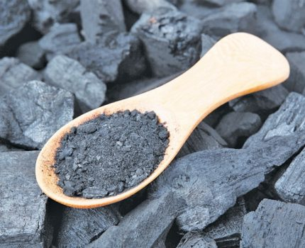 Lot Of Ignored Reality Concerning Turned On Charcoal Revealed